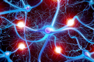 Роберт Сапольски: что происходит с нашим мозгом во время пандемии