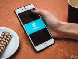 WhatsApp разрешил повторно загружать любые удалённые фото и ролики