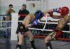 На Иссык-Куле пройдет чемпионат Азии по кикбоксингу