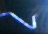 С орбиты при наблюдении за ураганом «Флоренс» заметили НЛО в виде змеи