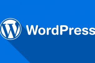 Разработчики WordPress намерены блокировать технологию Google как угрозу безопасности