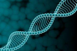Человеческие гены могут активизироваться после его смерти