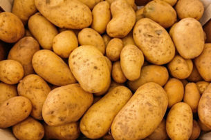 Первый ранний картофель продают на рынках Таджикистана и Узбекистана. Где дешевле?