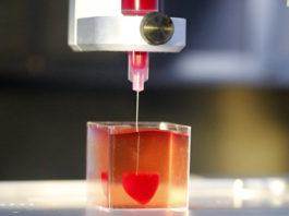 Израильские ученые только что напечатали первое 3D-сердце. Теперь человечество может производить все необходимые органы?