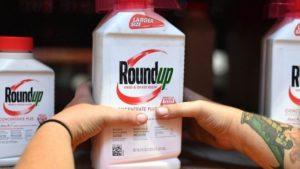 Глифосат - один из самых распространенных в мире гербицидов. Bayer приобрел производителя Roundup, американскую фирму Monsanto в прошлом году