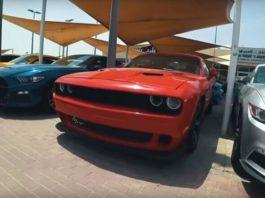 Сотни роскошных автомобилей гниют на свалке в Эмиратах: видео