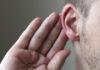 Во Флориде полицейские по объявлению нашли владельца потерянного уха