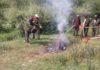 В заповедниках Кыргызстана проводят мероприятия по по предотвращению пожаров