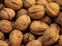 На Урал не пропустили 22 тонны грецких орехов из Кыргызстана