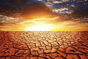 Засуха в Центральной Азии: аномальная жара, нехватка воды и неурожай. Чем это все обернется?
