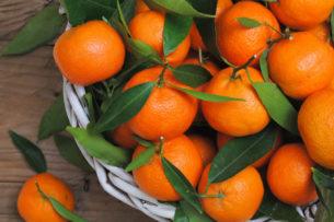 В России задержали 20 тонн китайских мандаринов, которые везли из Кыргызстана под видом пакистанских