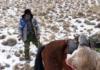 На Иссык-Куле браконьер, угрожая убийством, три часа удерживал егеря и эколога