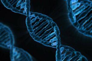 Ученые из США начали омолаживать пациентов на 25 лет за $1 млн