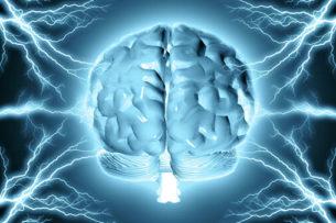 Подавленные человеком мысли сохраняются в скрытой области мозга