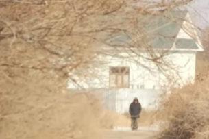 Мальчика-«маугли» нашли в Казахстане