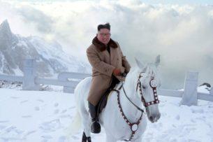 КНДР купила у России 12 чистокровных лошадей за 75,5 тыс. долларов