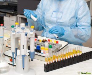 По всему миру идет поиск вакцины против коронавируса