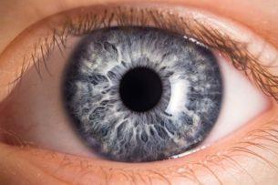 В Австралии состоится первая в мире трансплантация бионического глаза