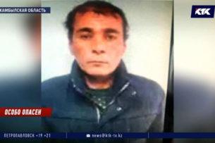 Обезглавленные тела двух женщин нашли в доме чабана в Жамбылской области