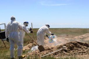 О чем молчат могилы? Захоронения спецкладбища в  Алматинской области