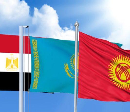 В Бишкек из Египта вернулись граждане Кыргызстана, в том числе и малолетние дети