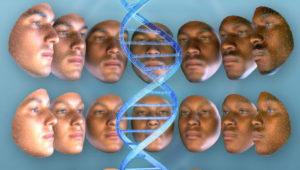 Пять расовых стереотипов, которые развенчала наука