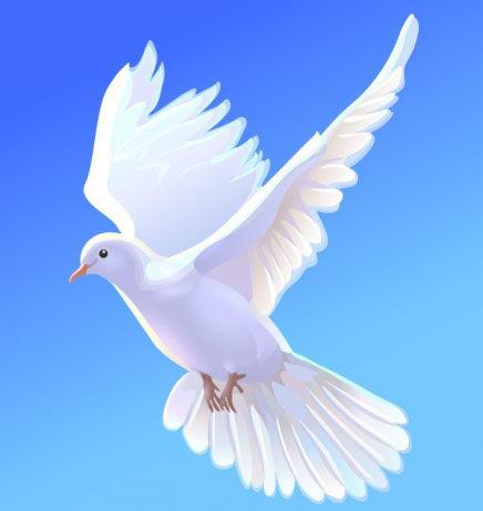 «Сбой в матрице»: «Застрявший» в небе голубь озадачил соцсети (видео)