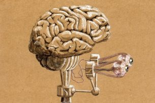 Почему важно не только учиться, но и разучиваться