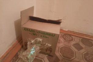 Кыргызский блогер получила посылку с отрезанной головой собаки