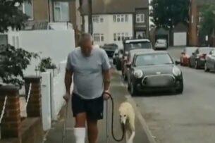 Пес начал хромать, чтобы поддержать хозяина со сломанной ногой