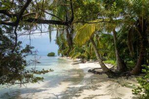 Ученые сумели определить местонахождение древнего рая на Земле