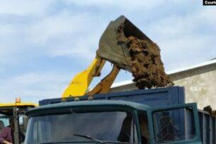 Вице-премьер Узбекистана обязал сотрудников СЭС собирать коровий навоз