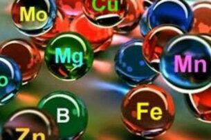 В организме человека нашли 55 новых химических веществ