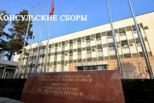 В Кыргызстане снижены тарифы за оказание консульских услуг