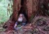 Мужчина больше 20 лет жил в лесу и не общался ни с кем. Полиция сбилась с ног, пока нашла
