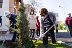 Посажено более  14 000 саженцев с целью  улучшения экологии Бишкека