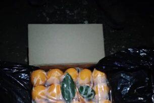ГКНБ: Задержана контрабанда более 3 тонн лимонов