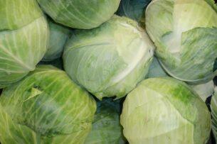 Погранчиники Кыргызстана пресекли незаконный провоз из Таджикистана 3,5 тонны капусты и 600 кг клубники