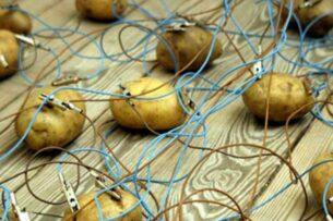 Почему никто не пользуется картофельной батарейкой Рабиновича