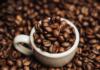 Ученые выяснили, как кофе влияет на мозг