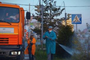 Раствор, которым обрабатывают деревья, безопасен для человека — мэрия Бишкека